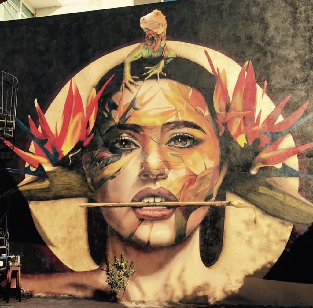 Murals and Street Art In Puerto Vallarta With Adrian Takano